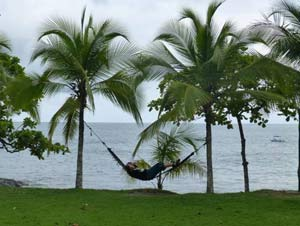 Hammock on palm beach