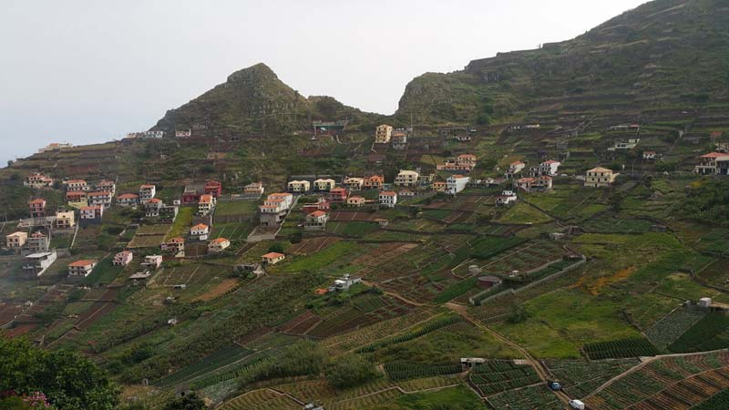 Agricultural Terraces in Madeira