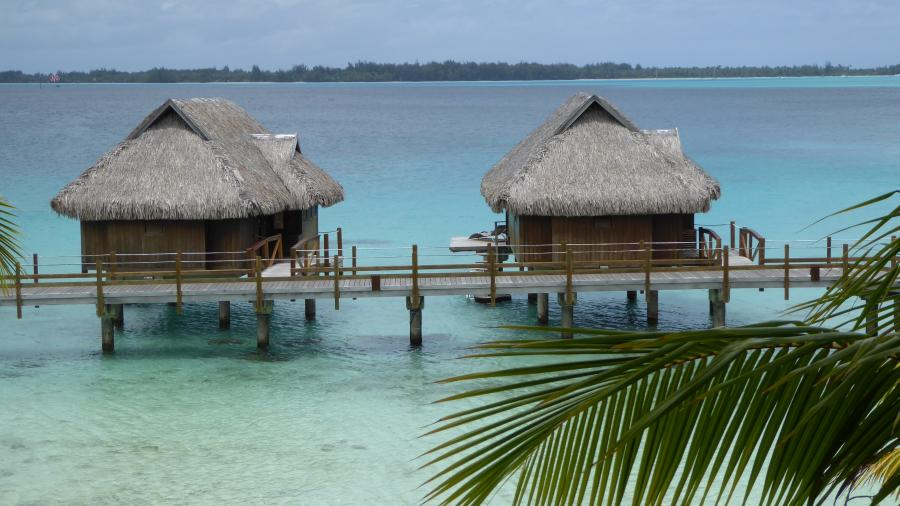 cabins on the water at the Sofitel hotel