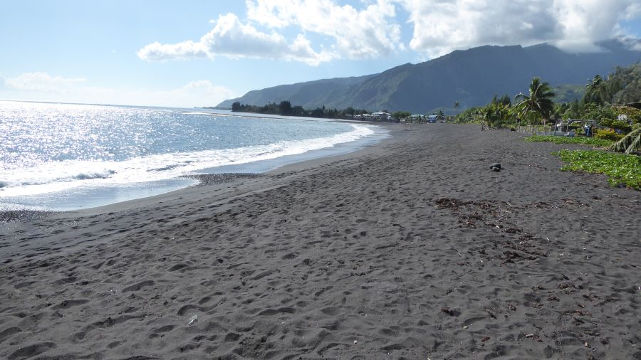 A beach with black sand